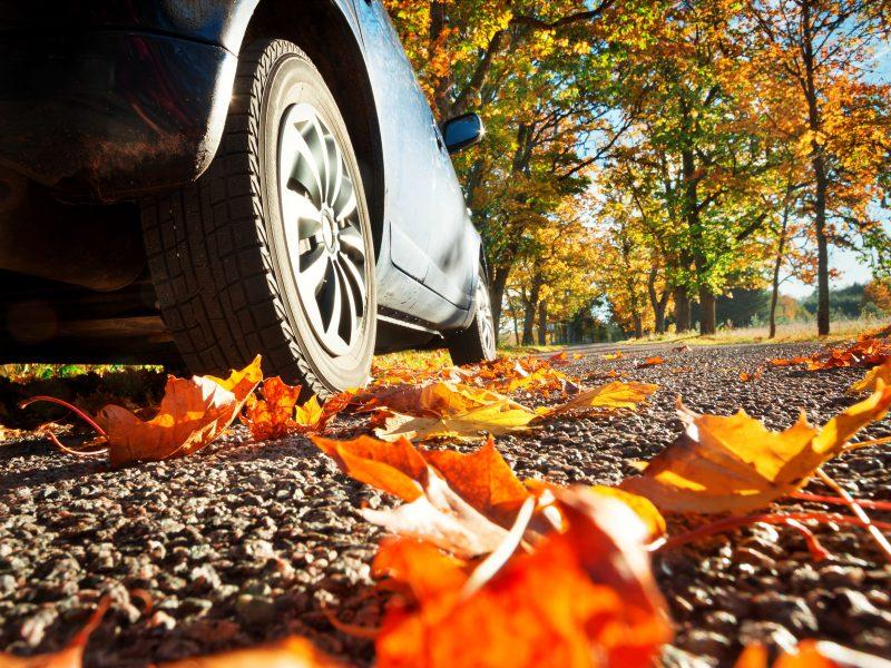 Herfst op de weg